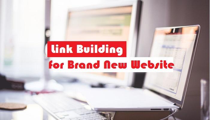 link building for brand new websites