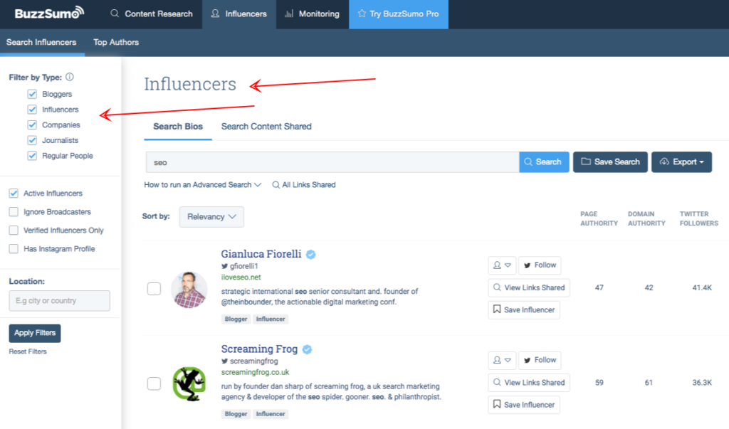 buzzsumo influencers type