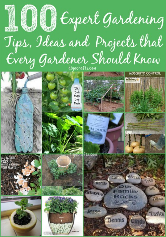 list gardening tips ideas hacks